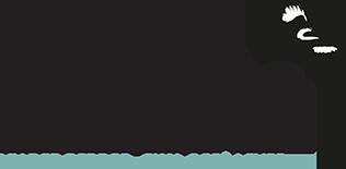 Hjerneskadet Logo