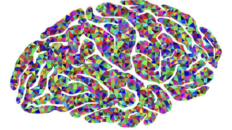 Hjerneuge, uge 11. Motiv: En hjerne sammensat af en masse farvede felter