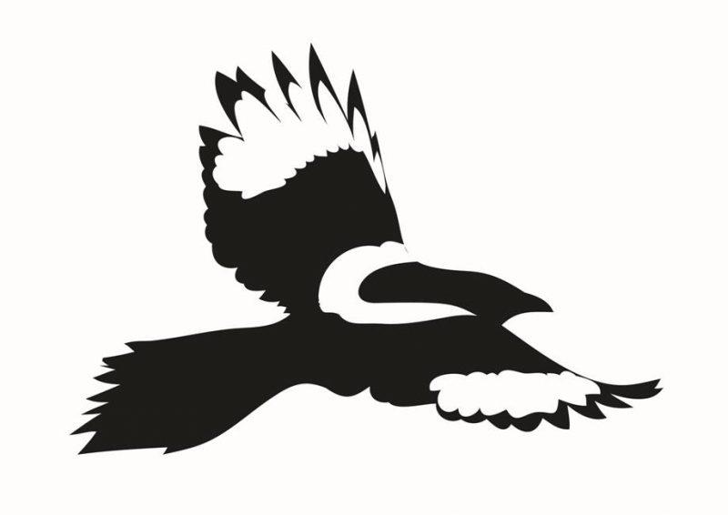 Motiv: Husskade - fra Hjerneskadeforeningens logo