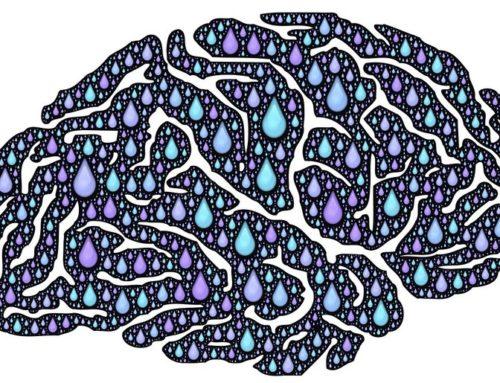 En stationær hjerneskade